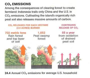 CO2-Emissions-Chart1