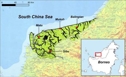 Rajang delta, Sarawak, East Malaysia