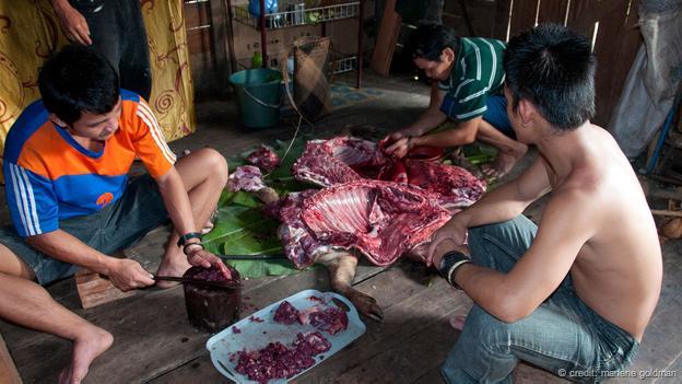 分配野豬肉