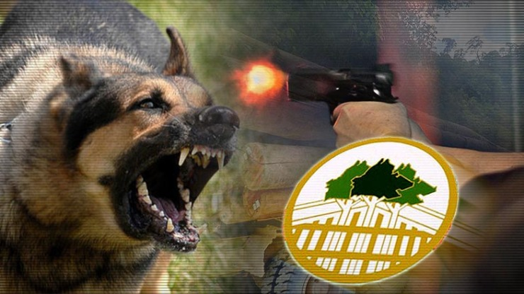 Firearms-canines-boost-enforcement-of-Sabahs forests_CHINESE_785x442