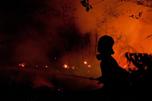 印尼的森林大火。圖片來源:CIFOR。(CC BY-NC-SA 2.0)
