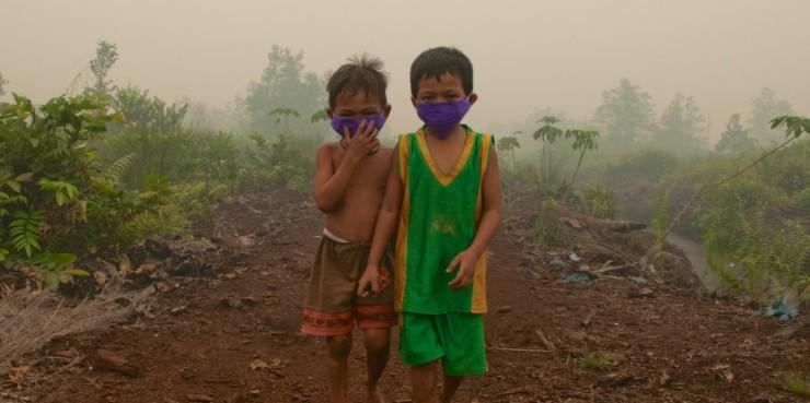 奧利亞( Aulia Erlangga/ 國際森林研究中心)攝影。