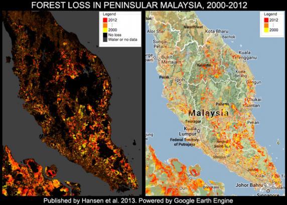 2000至2012年的大馬半島森林消失面積。