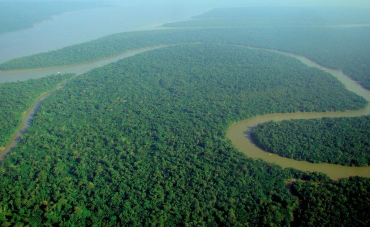 Aerial_view_of_the_Amazon_Rainforest-1024x629