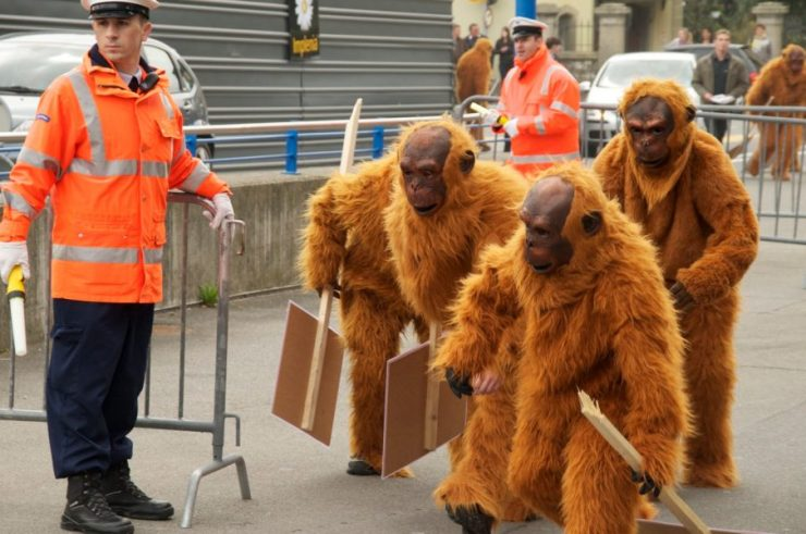 greenpeace-palm-oil-protest-orangutan-outfits-904x600