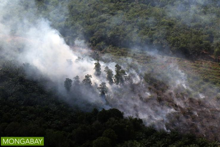 peat-fire-in-riau-sumatra
