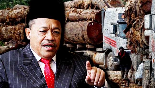 shahidan-kassim-logging