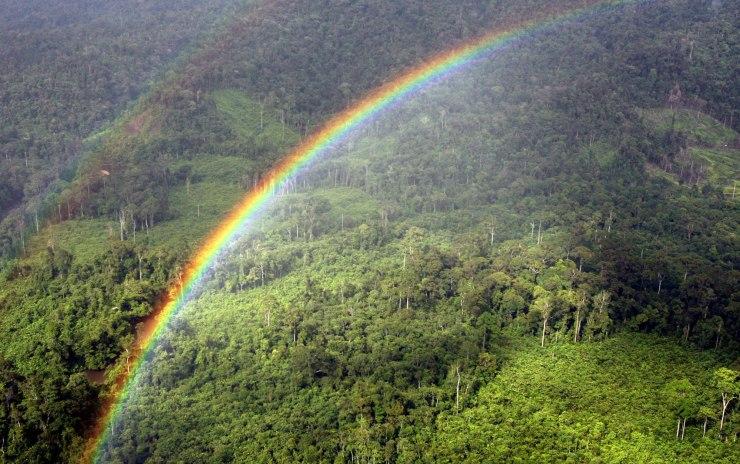 A Rainbow forms over the Ulu Baram rainf